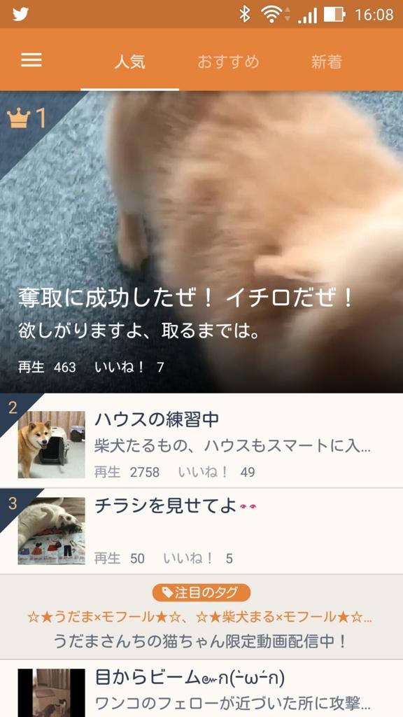 f:id:Daisuke-Tsuchiya:20160627105148j:plain