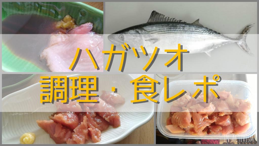 f:id:Daisuke-Tsuchiya:20161107210337j:plain