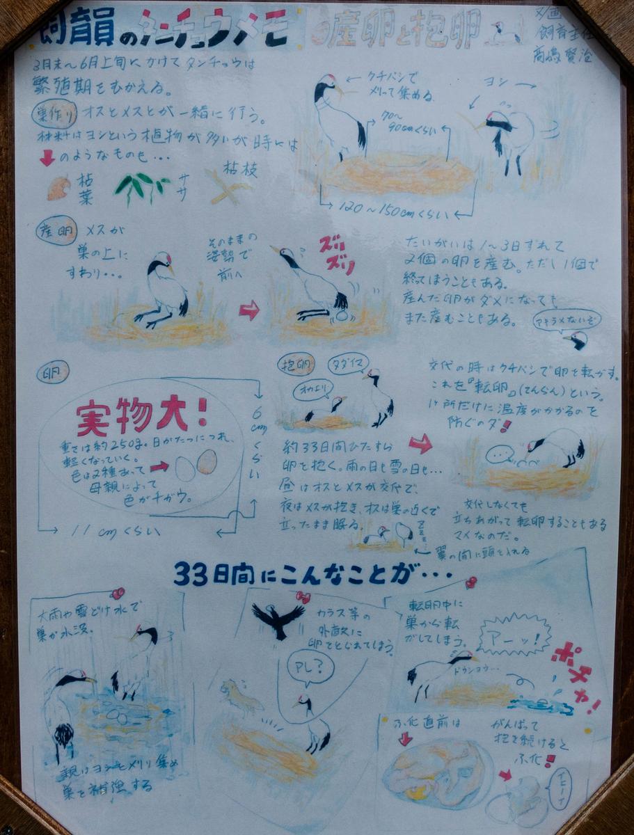 f:id:Dasaitama_Kenmin:20190904204949j:plain