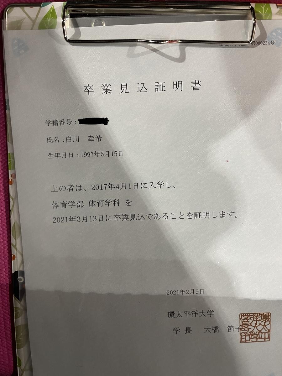 f:id:DensetsunoYaebaoh_Koki:20210209214242j:plain