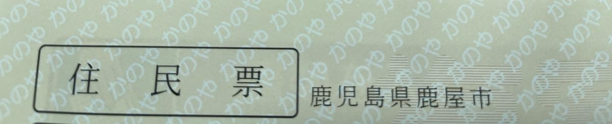 f:id:DensetsunoYaebaoh_Koki:20210302223927j:plain