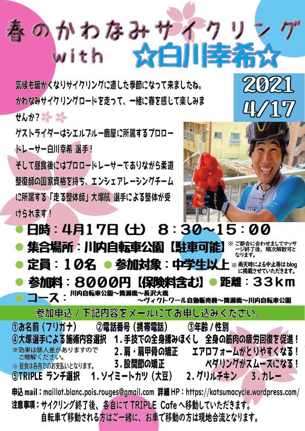 f:id:DensetsunoYaebaoh_Koki:20210324224759j:plain
