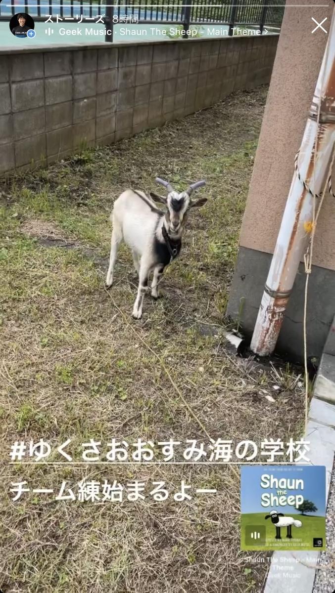 f:id:DensetsunoYaebaoh_Koki:20210619204828j:plain