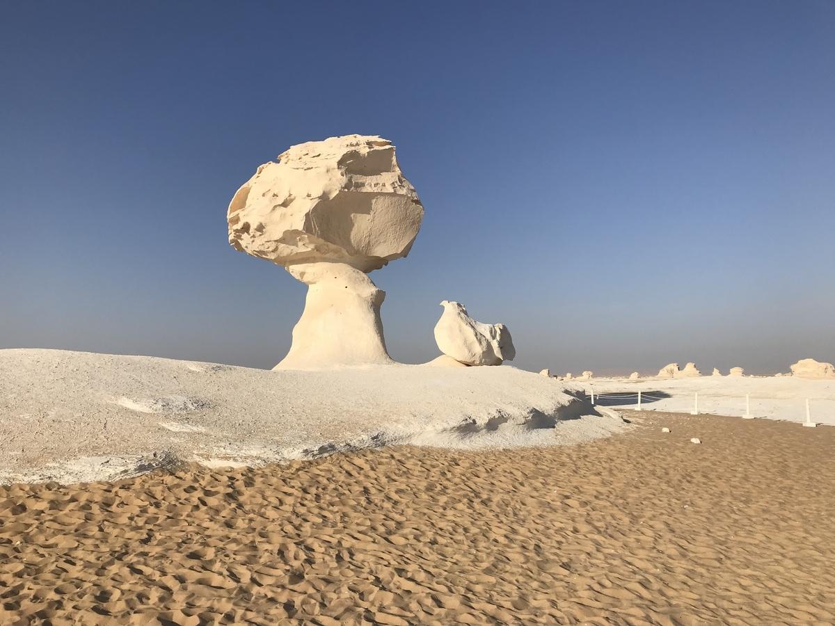 エジプト白砂漠にあるひよことマッシュルーム