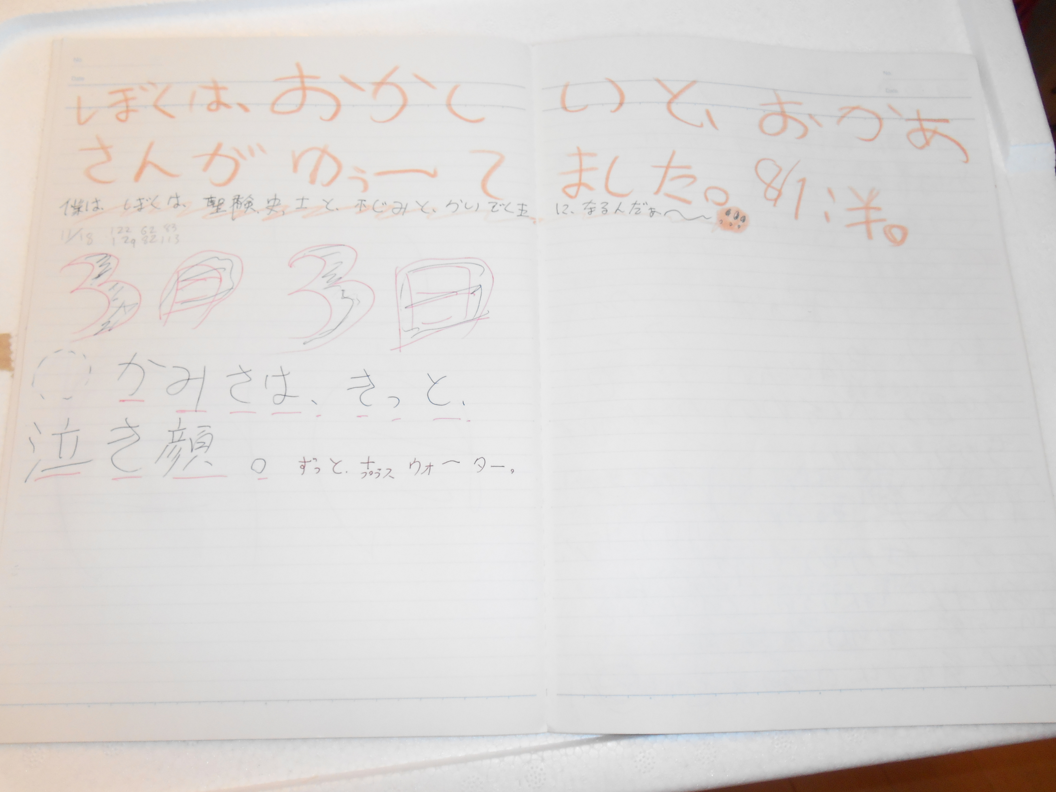 f:id:Df-kyounoyume-Sneonstiamlegnita:20170609181813j:plain