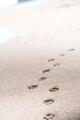 [砂浜][海][足跡][光][軌跡]