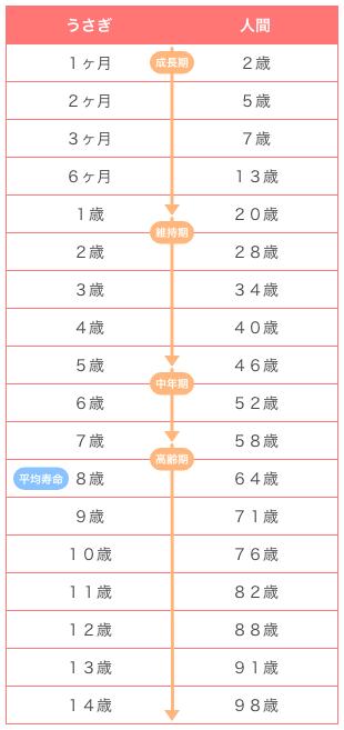 うさぎと人間の年齢比較・換算するための年齢早見表