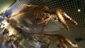 [生物]科博の海竜たち