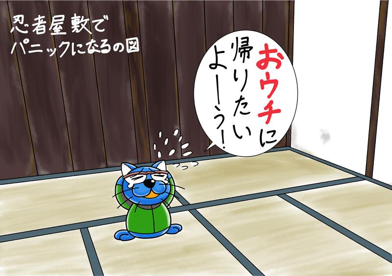 ドラねこ長野戸隠神社