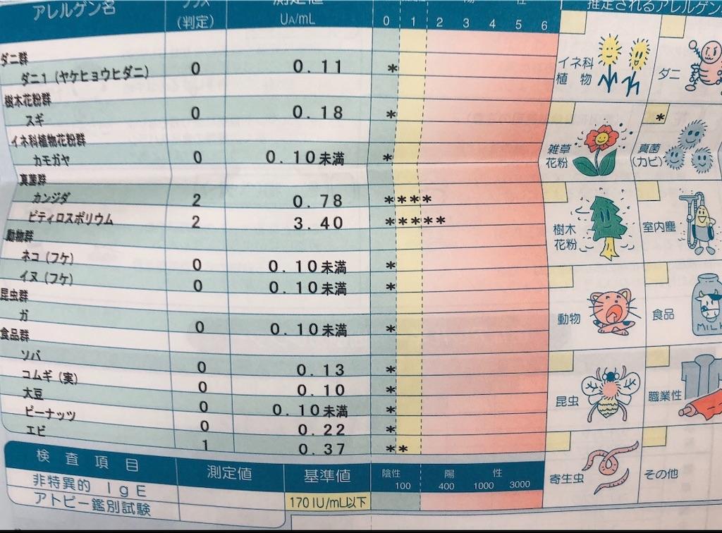 f:id:Dr-mochi:20201105204517j:image