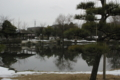 チューリップ公園