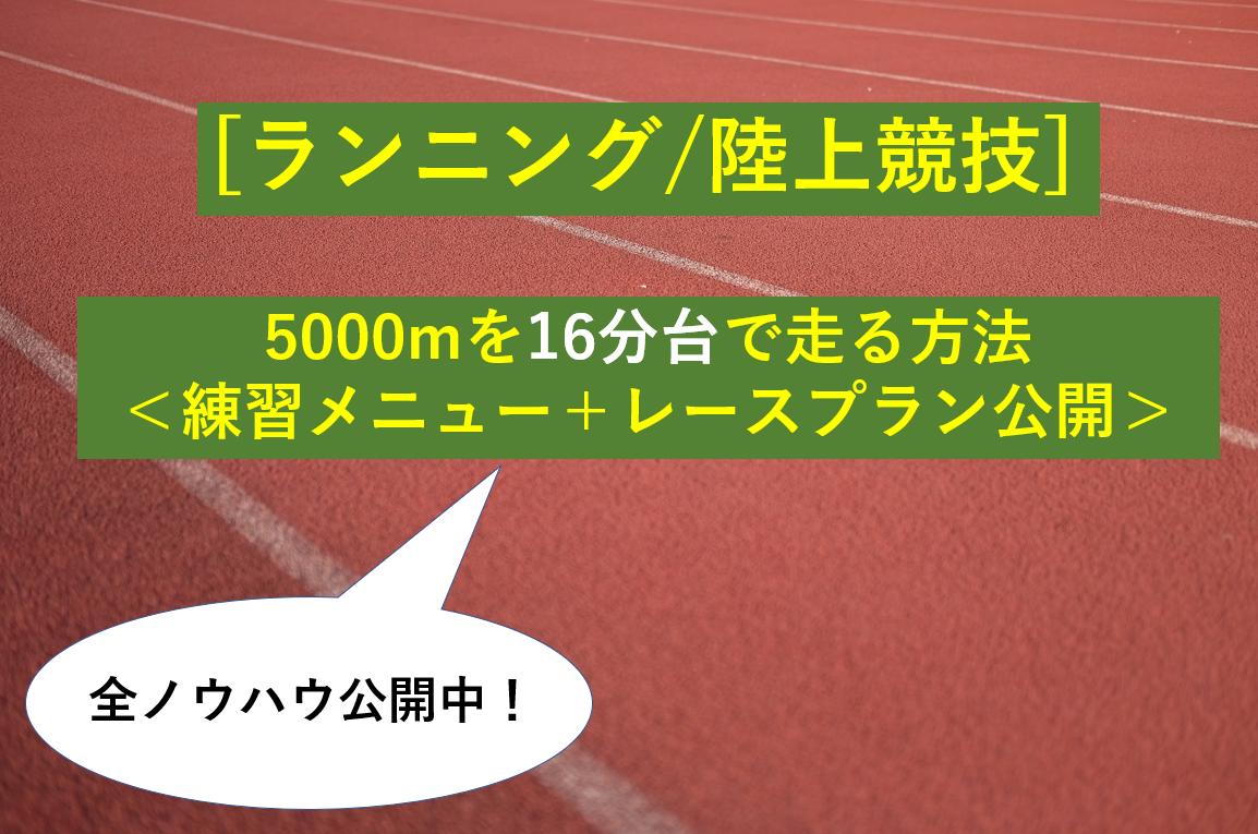 タイトル「ランニング/陸上競技5000m16分台で走るポイント」