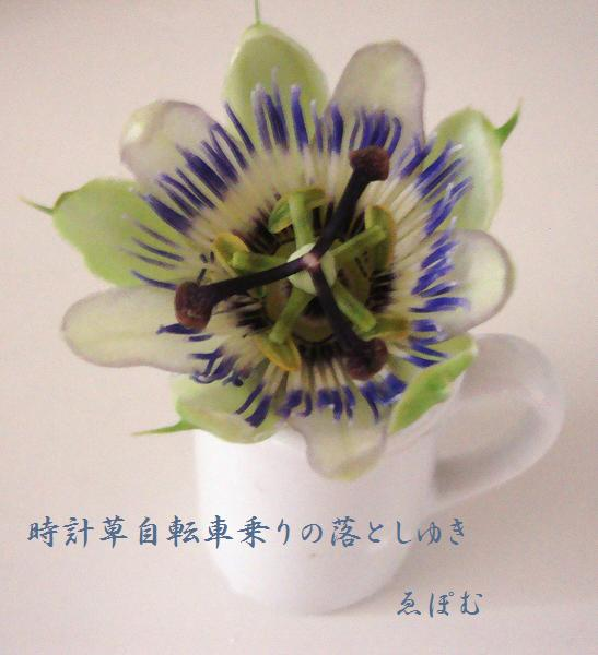 f:id:EPOM:20130713043257j:image