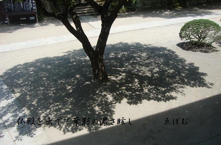 f:id:EPOM:20130716045324j:image