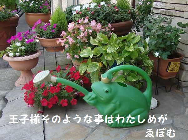 f:id:EPOM:20130722042831j:image