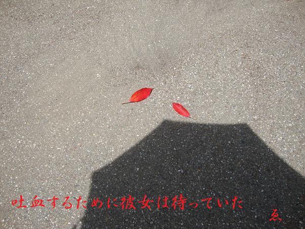f:id:EPOM:20130731052458j:image