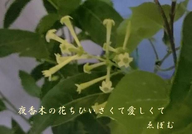 f:id:EPOM:20140820015629j:image