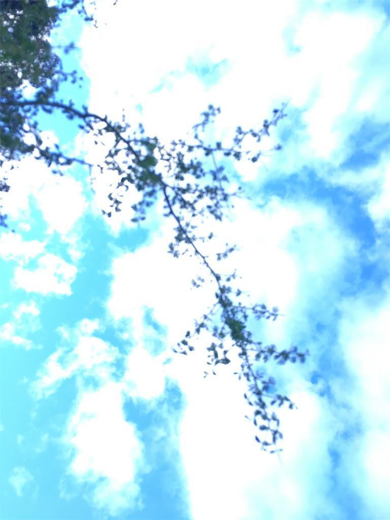 f:id:EarthAngelLight:20170703181633j:image