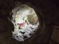 [史跡][左下観音]背面の岩山には、小さな洞窟が。