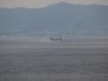 [海上自衛隊][US-2]水上滑走中の救難飛行艇US-2。大阪湾にて。