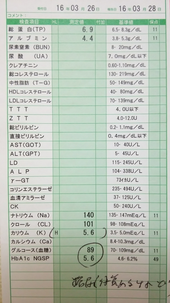 f:id:Eekomama:20170604213302j:plain