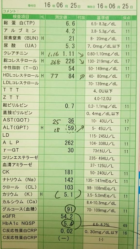 f:id:Eekomama:20170604213349j:plain