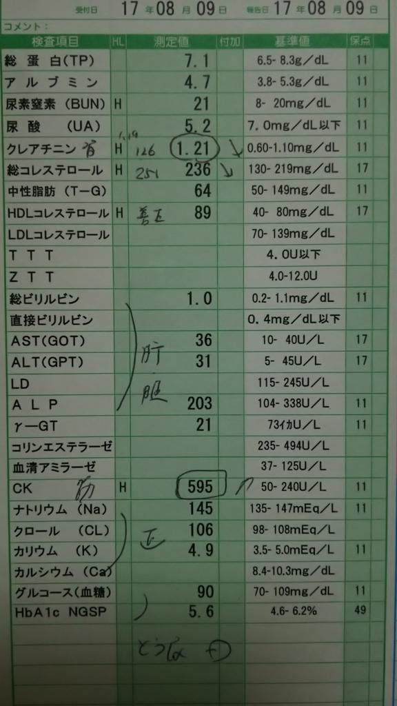 f:id:Eekomama:20170911220647j:plain