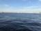 赤レンガ倉庫付近の海