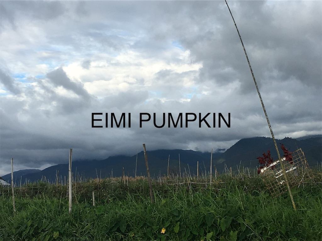 f:id:Eimypumpkin:20190917080438j:image