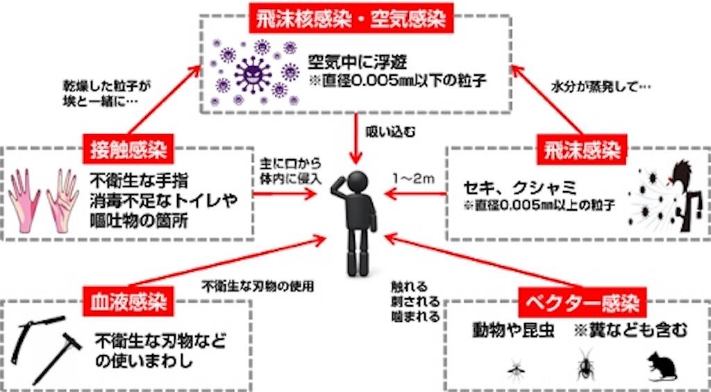f:id:EitaMido:20200419191946j:image