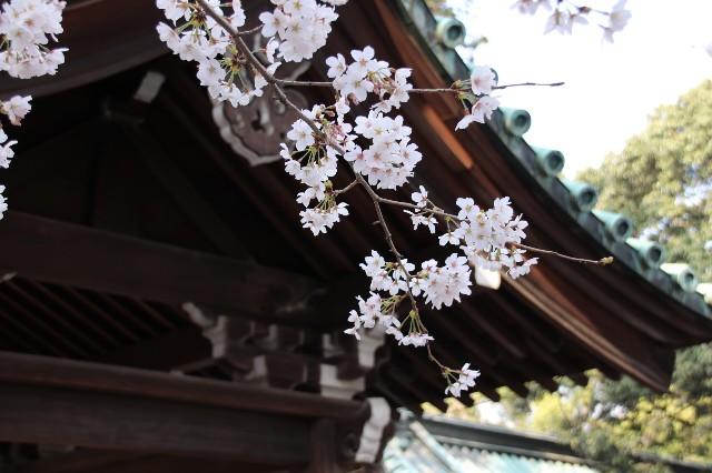 f:id:Eiyoku_JK:20180327030331j:image