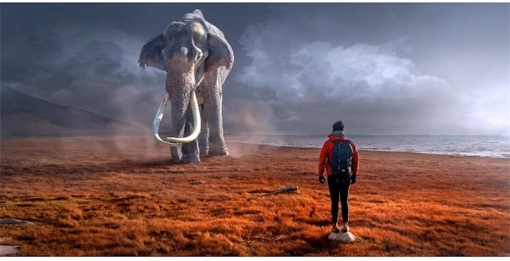 f:id:ElephantDaddy:20191208101912j:image