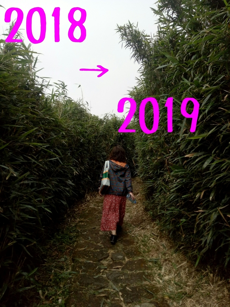 f:id:Ellie-ak:20190101224156j:plain