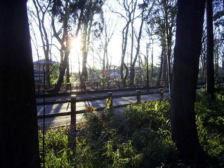 2007newyear_walk1