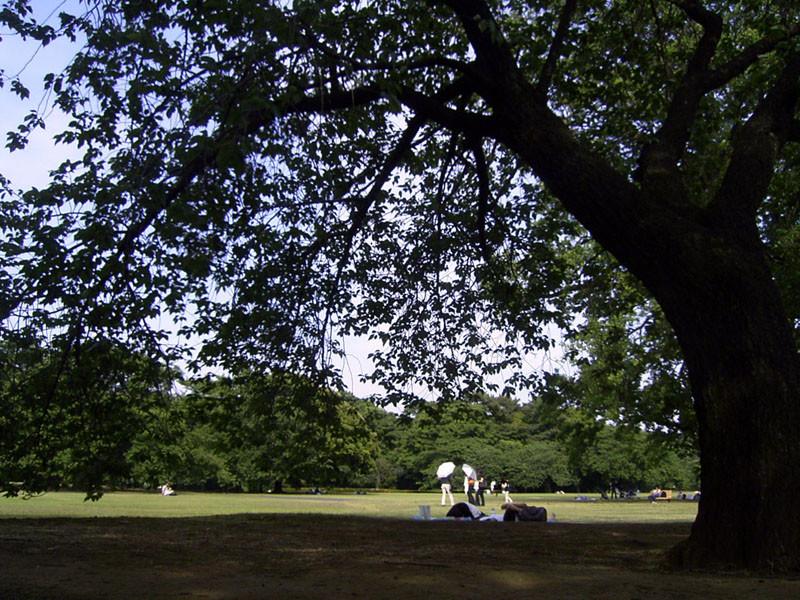 f:id:Emmaus:20070523150103j:image:w640