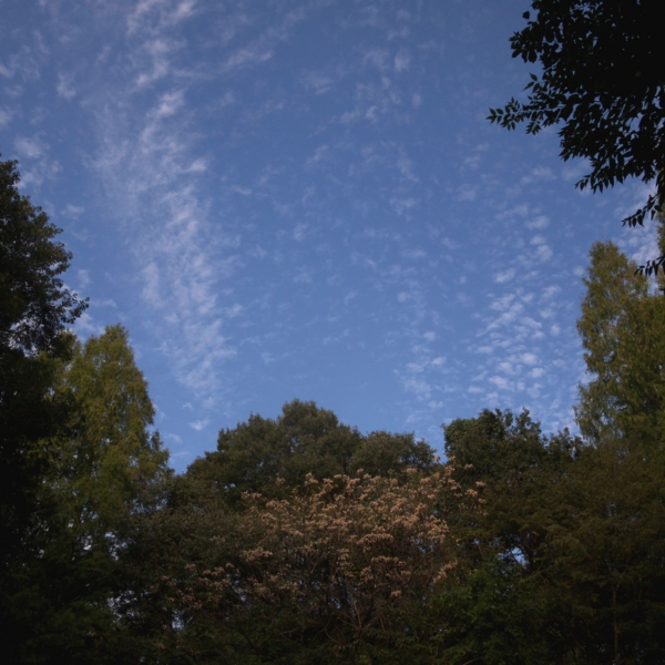f:id:Emmaus:20111025144840j:image:h350