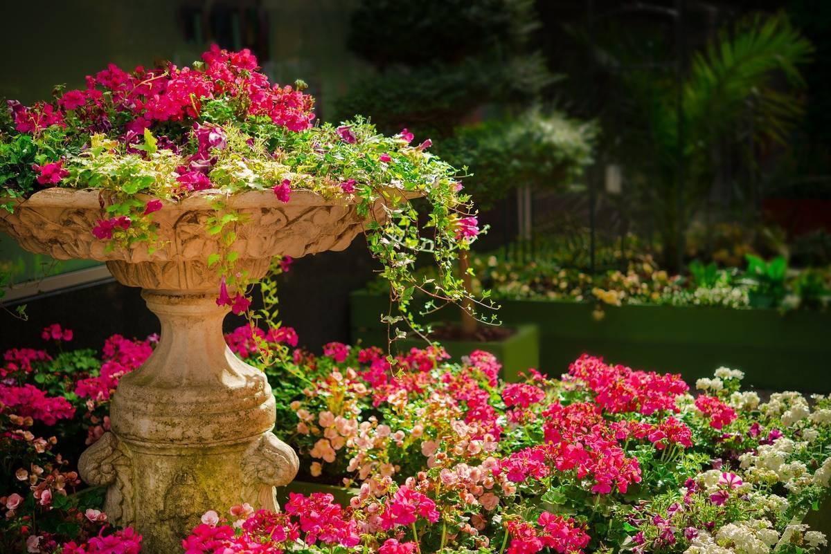 世界のイベントを英語で紹介!スペインの美しい中庭を巡る「パティオ祭り」