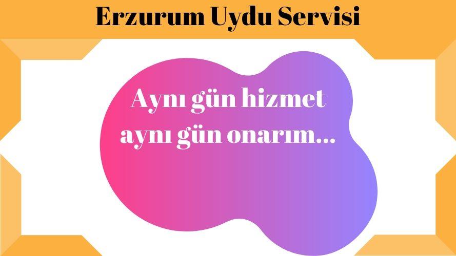 Erzurum Uydu Servisi