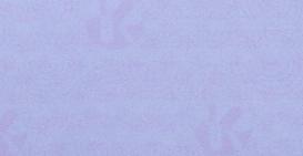 f:id:Estoppel:20200216170431p:plain