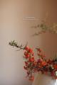 都窪郡早島町の風景写真 - いかしの舎/生け花