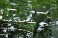 図書館の窓-蛍光灯/岡山市北区幸町にて