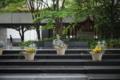 岡山市北区柳町の風景写真 - 植木鉢