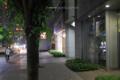 岡山市北区下石井の風景写真 - 夜の市役所通り