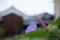 都窪郡早島町の風景写真 - 軒先の花