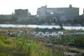 岡山市中区御幸町の風景写真 - 秋草