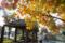 岡山市中区桑野の風景写真 - poplar