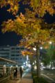 岡山市北区磨屋町の風景写真 - Night journey