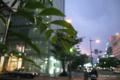 岡山市北区駅元町の風景写真 - The street corner of twilight