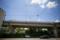 岡山市中区新築港の風景写真 - Tropical day