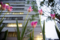 岡山市北区駅元町の風景写真 - Tulipa